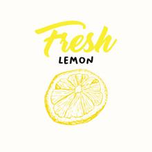 Fresh Lemon Vector Illustration. Sketch Fruit Clipart. Handwritten Lettering, Calligraphy. Isolated Yellow Citrus Color Design Element. Sliced Lemon Engraving Style Drawing. Shop Sign, Logo