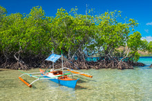 Small Outrigger Boat And Mangrove Trees On CYC Island