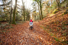 Woman Walking With Baby Carriage On Road In Forest