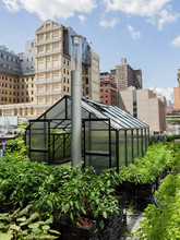 Small Green House On Ground Le...
