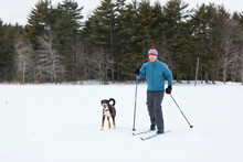 Man Cross Country Skiing With Dog On Frozen Pond