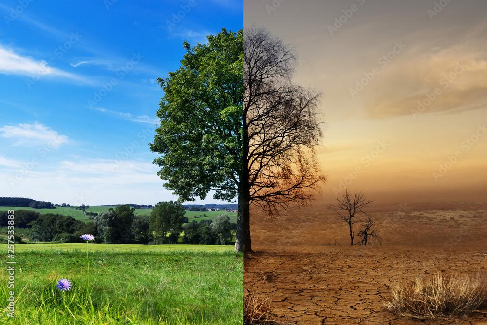 Fototapeta Klimawandel