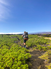 Man Hiking Among Plants In Vol...