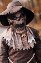 Boy Dressed In Spooky Scarecrow Halloween Costume In Field