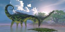 Agustinia Dinosaur Swamp - Agu...
