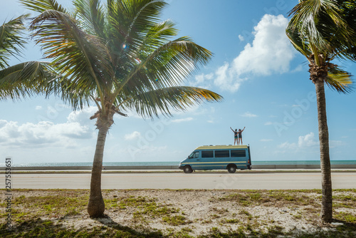 Campervan in the tropics Wallpaper Mural