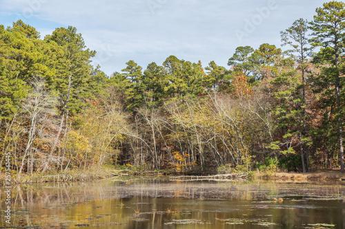 Fotografie, Obraz  Camp Five Pond