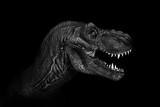Tyrannosaurus Rex close up on dark background. - Image