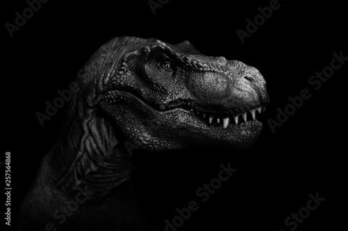 Spoed Foto op Canvas Olifant Tyrannosaurus Rex close up on dark background. - Image
