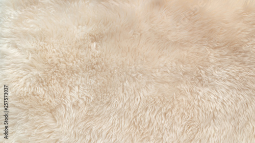 Obraz White soft wool texture background, cotton wool, light natural animal wool, close-up texture of white fluffy fur, wool with beige tone, fur with a delicate peach tint - fototapety do salonu