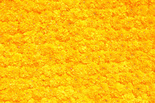 Marigold Flower Decorative On ...