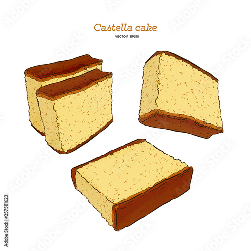Japanese sponge cake - castella. Hand draw sketch vector. Wallpaper Mural