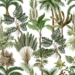 Fototapeta Egzotyczne Seamless pattern with exotic trees such us palm, monstera and banana. Interior vintage wallpaper.