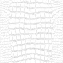 Crocodile Skin Gray And White Seamless Pattern