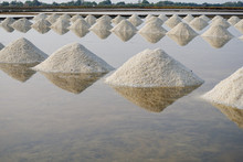 Heap Of Sea Salt In A Field Pr...