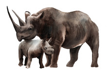 Watercolor Animals - Black Rhino With A Kid