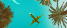 Palm Trees Perspective View Long Banner With Airplane Vintage Toned With Copy-space