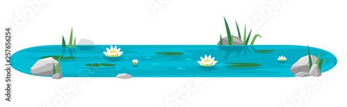Cuadros en Lienzo Small blue decorative pond with white water lilies, bulrush plants, stones aroun