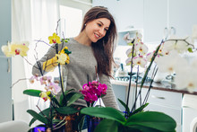 Woman Spraying Water On Orchid...