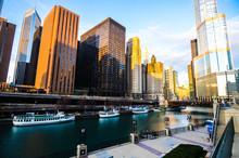 Chicago City Scape 4