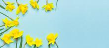 Spring Floral Background. Fram...