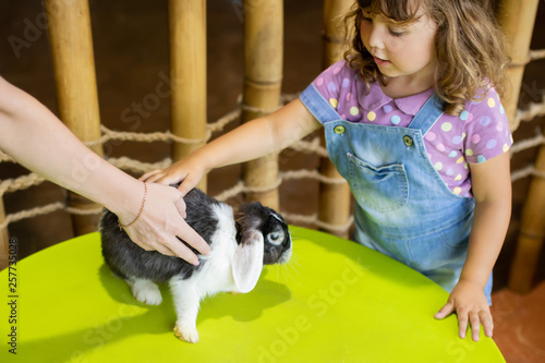 Fotomural  Adorable little girl playing with rabbit at the petting zoo