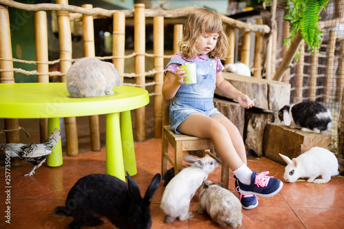 Fotomural  Adorable little girl playing with rabbits at the petting zoo