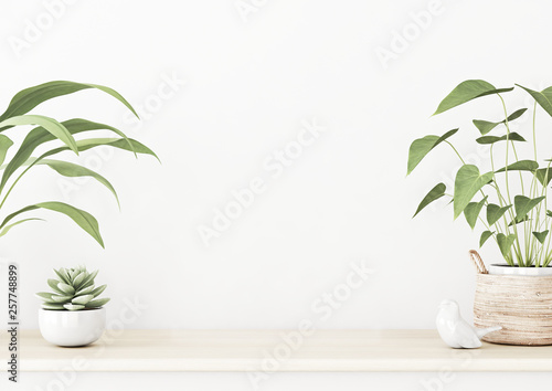 Fotografering  Interior wall mockup with wooden table, succulent and green home plants in basket standing on empty white background