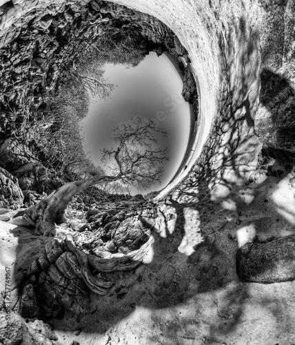 Fotografie, Tablou  Lunar landscape.