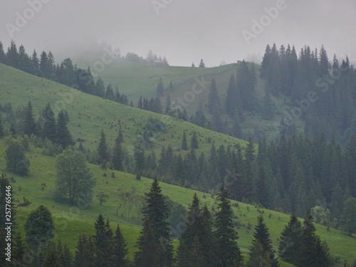 Foto auf Gartenposter Hugel nature panorama green forest mountain fog cloud travel