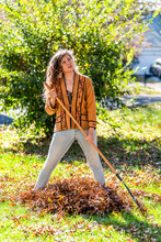 Young Woman Homeowner In Garden Front Yard Backyard Raking Collecting Of Dry Autumn Foliage Oak Leaves Standing With Rake In Sunny Fall Looking Up Tired