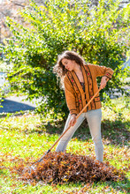 Young Woman Homeowner In Garden Yard Backyard Raking Collecting Of Dry Autumn Foliage Oak Leaves Standing With Rake In Sunny Fall