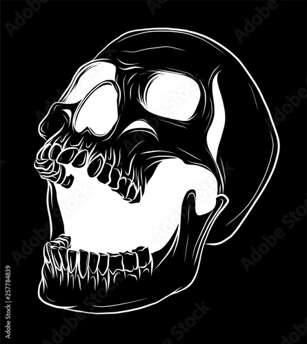 Fényképezés Skull Vector illustration, Collection Of Hand Drawn Skulls, Hard Core Skull Vect