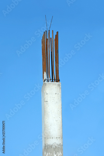 Armature rod for reinforcing Canvas Print