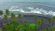 Kiholo bay black sand beach with palm trees Big Island Hawaii aerial .