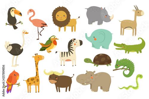 Jungle animals and birds set, flamingo, gazelle, elephant, rhinoceros, ostrich, Wallpaper Mural