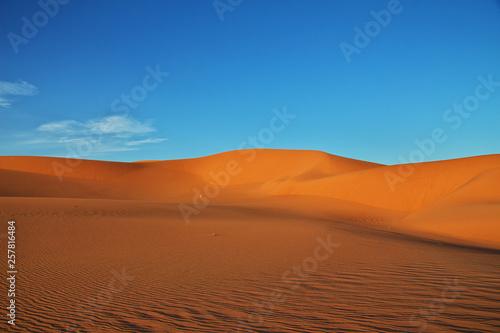 Foto op Aluminium Koraal Dune, Sand, Desert, Algeria, Sahara, Egypt, Tunisia, Africa