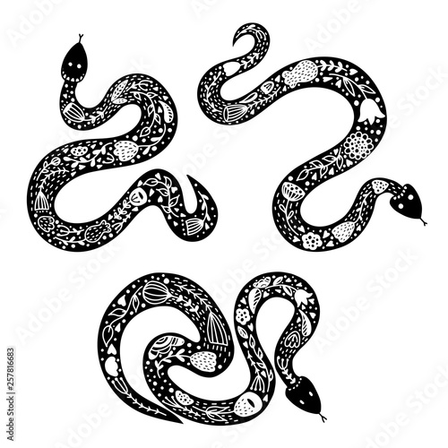 Fototapeta  Set of three snakes in scandinavian style on white background.