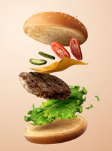 Delicious Flying Hamburger