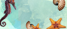 Sealife Summer Banner With Oil...