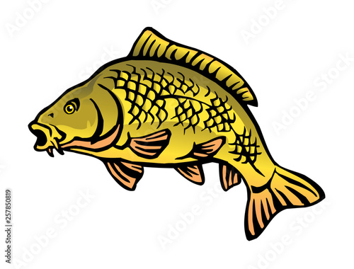 carp fish with fish scales big fish color icon - Buy this