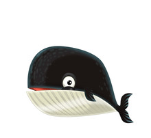 Cartoon Happy And Funny Sea Whale On White Background - Illustration For Children