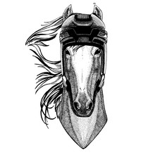 Horse, Hoss, Knight, Steed, Courser, Animal Wearing Hockey Helmet. Hand Drawn Image Of Lion For Tattoo, T-shirt, Emblem, Badge, Logo, Patch.