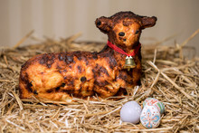 Easter Lamb And Rabbity Sprink...