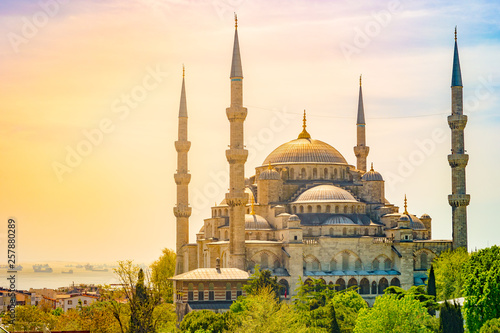 Photo  Minarets and domes of Blue Mosque with Bosporus and Marmara sea in background, Istanbul, Turkey