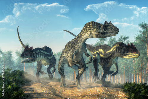 Fotografie, Obraz Three allosauruses kick up dust as they hunt along a rocky track created by the passage of large dinosaurs