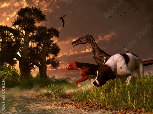 Photo A velociraptor hunts along with two dogs