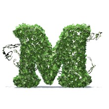 Letter M Created Of Green Ivy Leaves With Shadow On The Floor - Isolated On A White Background