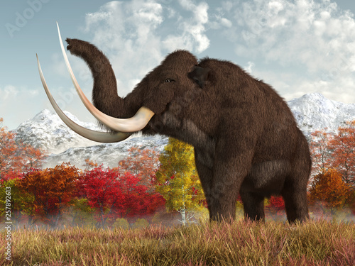 a-shaggy-woolly-mammoth-stands-in-the-long-grass-of-a-field-in-an-autumn-scene-this-massive-animal-is-an-extinct-creature-of-the-ice-age-3d-rendering