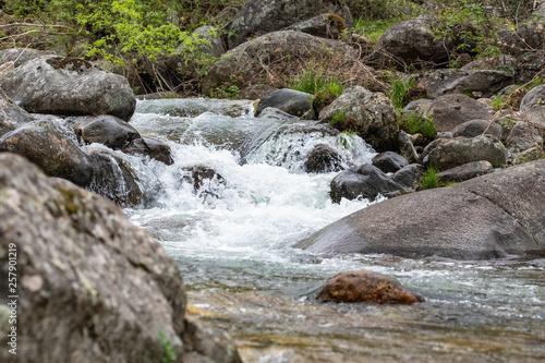 Fototapeten Forest river Valle del Jerte. Caceres. España